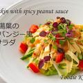 湯葉のバンバンジー風サラダ スパイシーピーナッツソース