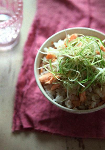 ねぎサラダのせ鮭ご飯