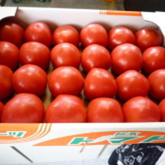 ミォ風 自家製トマトケチャップのレシピ