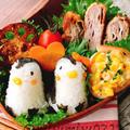 【キャラ弁】ペンギンおにぎりとミルフィーユカツ弁当 by Misuzuさん
