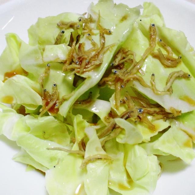 春キャベツのカリカリじゃこサラダ