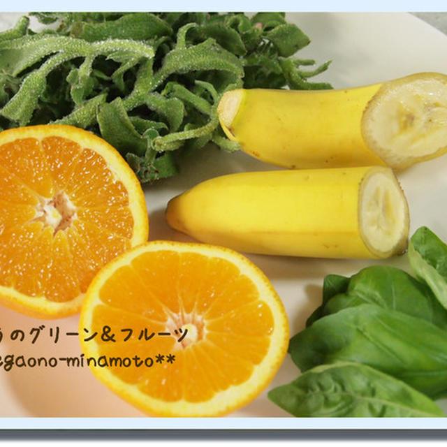アイスプラント+オレンジ+バナナ+バジルのグリーンスムージー。