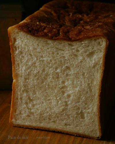 かわいそうな粉とかわいそうな型でパンドミ。