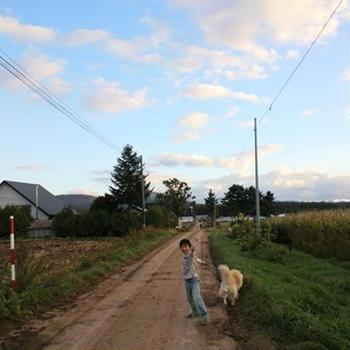 ワンコと散歩と秋の空