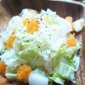 みかんと白菜の春雨サラダ☆