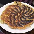 3つのハーブ香るあっさりウマウマ餃子とパラパラ炒飯 again! by アサヒさん