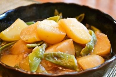 家庭菜園 IN アメリカ 採れたてのモロッコ豆で 母の味