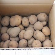 到着♪高知県奈半利の郷「新じゃが芋5kg」