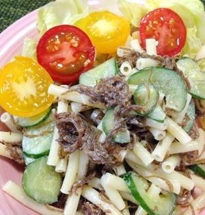 モズクとマカロニのサラダ☆今日のイチオシ!ブログ&レシピ