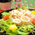 茹でイカの カルパッチョ風 サラダ☆