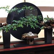 「お月見」のコーデ 倉敷テーブル&ライフクリエーション