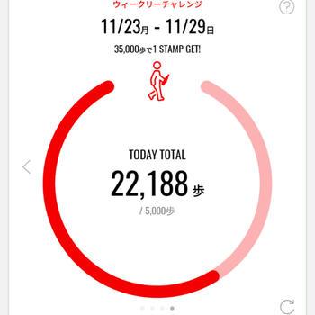 今日は沢山歩いた日。