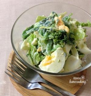 ふんわり優しくて 簡単♪ゆで卵と菜の花*春キャベツの春サラダ to 私事ですが