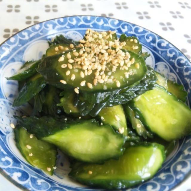 キュウリの辛子漬け  野菜の花