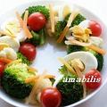 野菜と玉子のサラダ クリスマスリース風