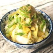 大量消費にもおすすめ日持ちする常備菜。やみつき白菜ナムル
