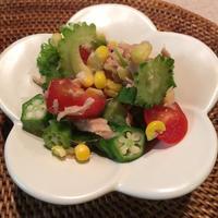 缶詰・びん詰・レトルト食品でつくる10分レシピコンテスト 夏野菜とツナのサラダ