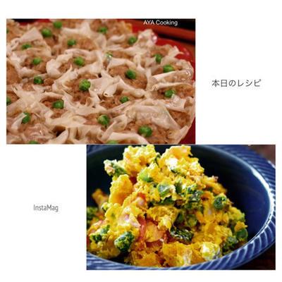 色々オススメ♡春雨と舞茸のシューマイと今日のサラダ