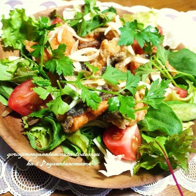 <ニジマスの野菜いっぱいマリネ> 雨の弥彦山