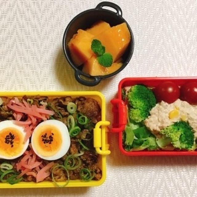 牛丼弁当・茨木の赤肉メロン・メダカの水草・有終の美?