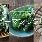簡単に出来るピーマンのレシピ5選!お弁当の副菜や作りおきで大活躍