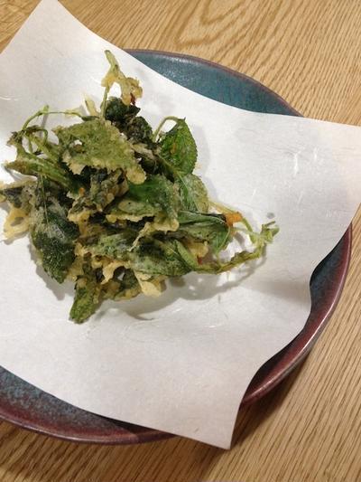 意外と天ぷらになる 「モロヘイヤの天ぷら」