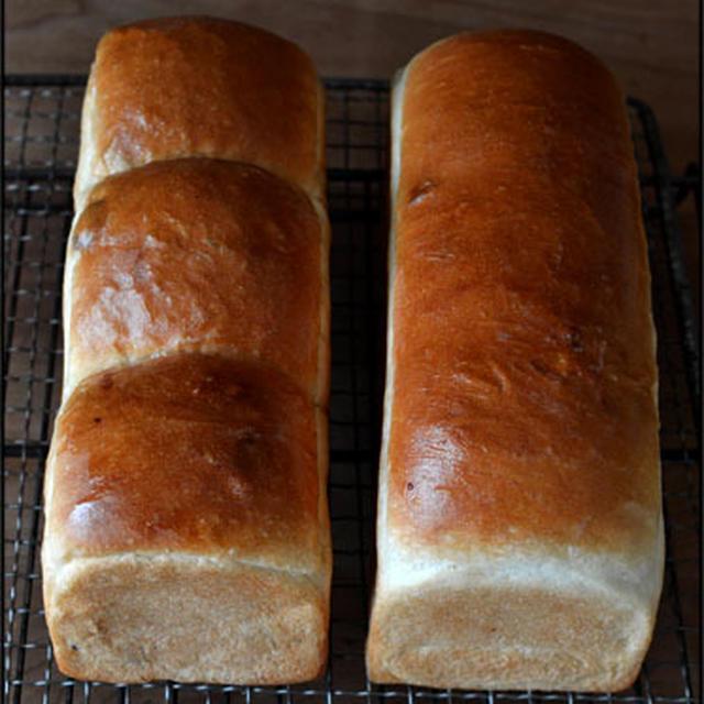 小さめのレーズン山食パン