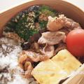 香りソルトガーリック&オニオンを使って簡単お弁当