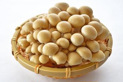 香り松茸、味しめじ ~しめじってそんなに美味いか?~