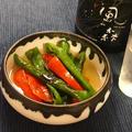 【夏の副菜】ししとうと赤ピーマンの焼き浸し