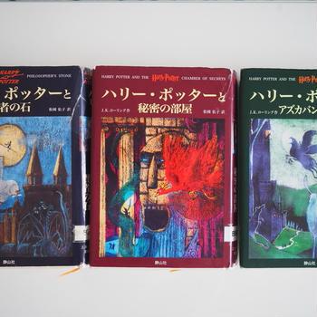 この頃読んだ本♪ダヴィンチコード、ハリーポッターなど10冊ほど♪