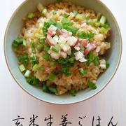 玄米生姜ごはん*マクロビ