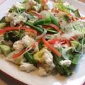 春野菜たっぷり手作りカッテージチーズと手作りオレンジドレッシングサラダ