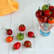 マウロ地中海トマト
