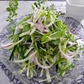 うっとおしい梅雨時期の食卓☂水菜と紫蘇のサラダ