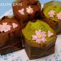 春の花カップケーキ(チョコと抹茶の2種)☆簡単パウンドケーキアレンジでホワイトデーのラッピング by めろんぱんママさん