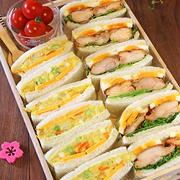 キッズが大好き2種のサンドウィッチピクニック弁当☆