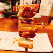 大和肉鶏、淡海地鶏を楽しめる「熟成鶏 とことこ」さんで一献