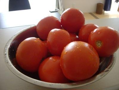 完熟トマトで。