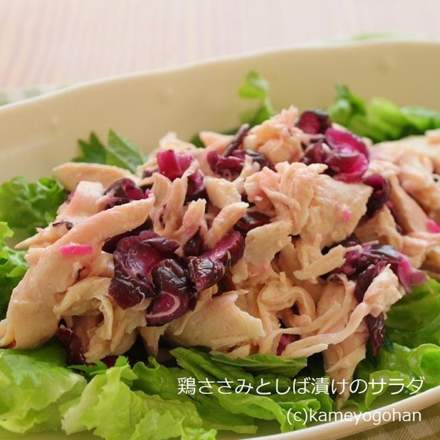 鶏ささみとしば漬けのサラダレシピ & 鶏ささみサラダBEST3
