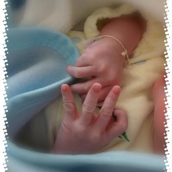 産まれました~(*´∀`)の巻