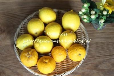 レモン酵素ジュース
