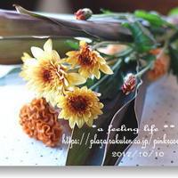 レシピブログの「花と料理でハロウィンを楽しもう♪」