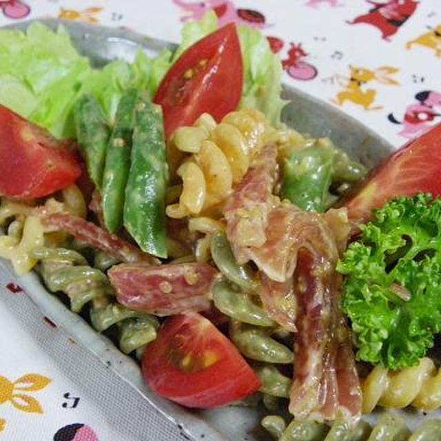 サラダ マカロニ 山本 ゆり レンジで作る夏の最強時短レシピ『しっとり!レンジで*よだれ鶏のサラダ』/『syunkonカフェごはん』山本ゆり