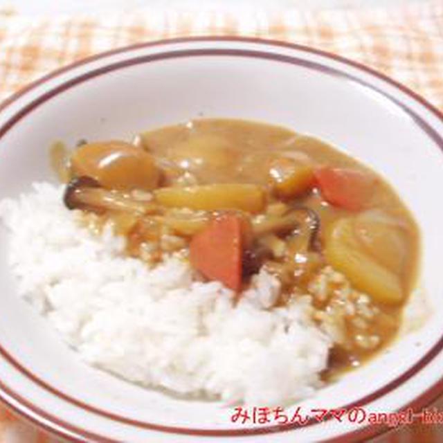 ☆今日の夕食〜あっさり♪ カレーシチュー☆