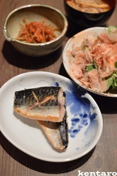 【フライパンで鯖の塩焼き】乾物の 金平セット 超楽チン