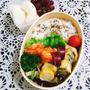 今日のお弁当と小松菜の冷凍ストック