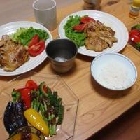 今夜は揚げ野菜とおろし×おろしのサラダです