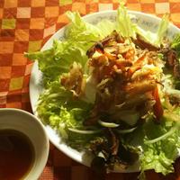 カリカリきんぴらとお豆腐のサラダ