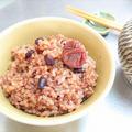 《発芽酵素玄米》1回の講座で習得!! 玄米を安全においしく炊くには?かみづらい方にも。